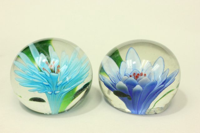 10 Floral Paperweights - 6