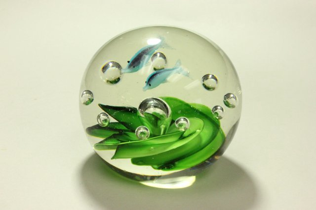 5 Paperweights - 4