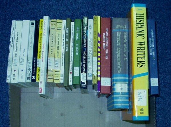 8513: Ryan Imbert Writers SPANISH LITERATURE Millan