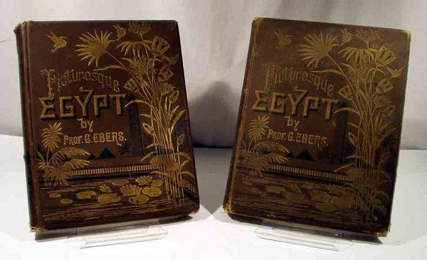 2352: Ebers PICTURESQUE EGYPT c1879 Descriptive Birch