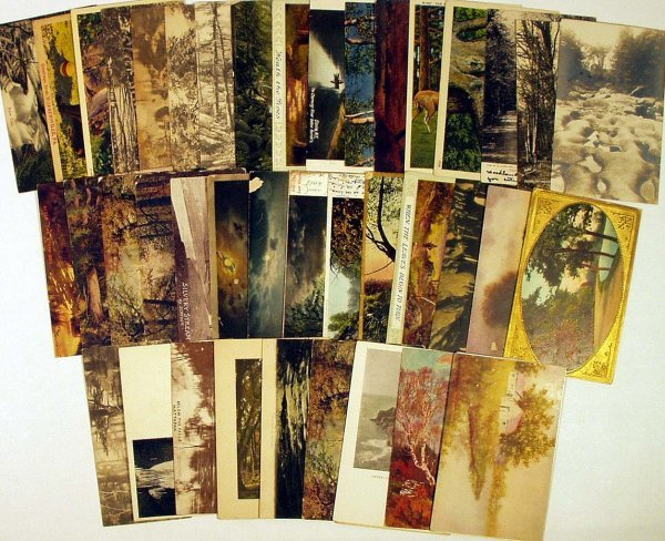 9013: 43Pc ANTIQUE VINTAGE NATURE POSTCARDS Seasons