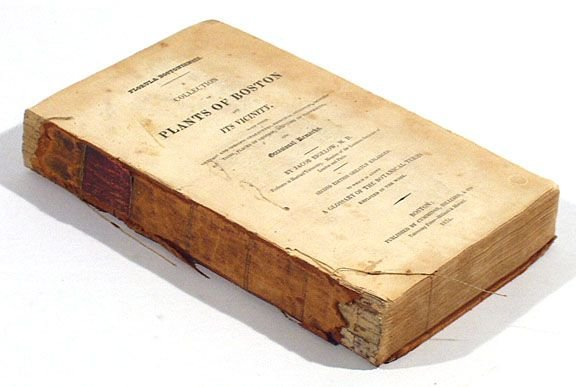 2: Bigelow - Plants of Boston & Vicinity 1824