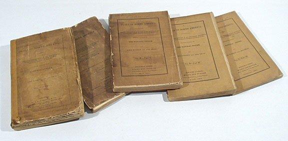 669: Gray Flora North America 1838-1843 softcover rare