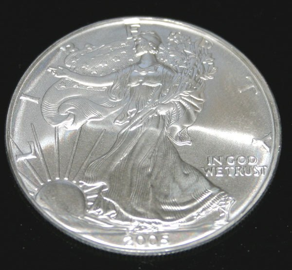 2017: US  SILVER  DOLLAR COIN  2005 .