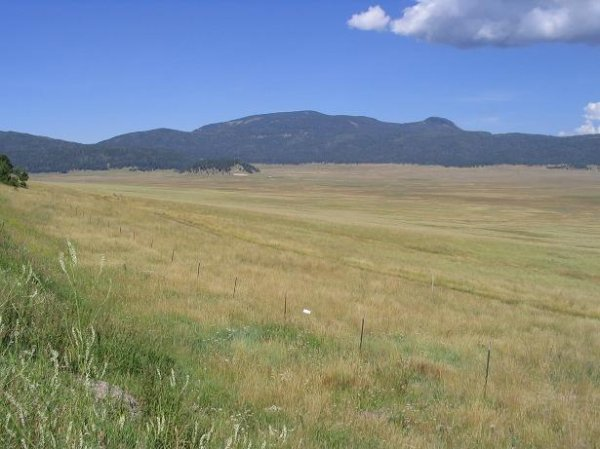 3120: NEW MEXICO LAND, BERNALILLO AREA, 2 AC, TERMS