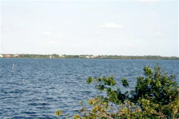 3908: FLORIDA LAND, PORT CHARLOTTE AREA, 0.25 AC, TERM