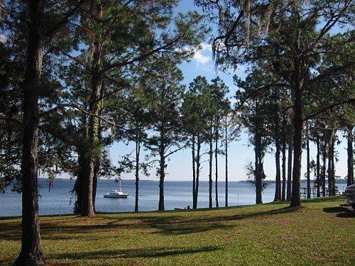 3921: FLORIDA LAND, SATSUMA AREA, 0.21 AC, TERM