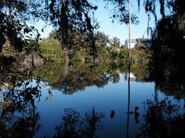 4613: FLORIDA LAND, BAYONET POINT AREA, 0.18 AC, TERMS