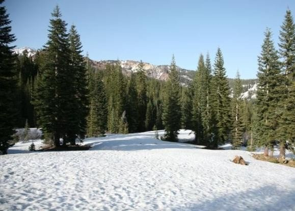 4809: California Land, Rancho Tehama Area, 1.11 AC, Ter