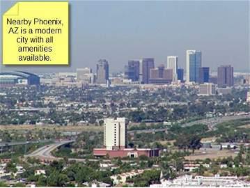 4911: 1.25 AC in Maricopa County, Arizona - Terms