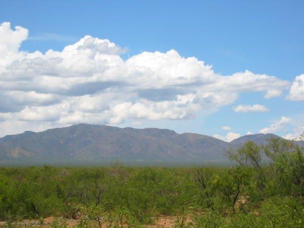 8: ARIZONA LAND; COCHISE CO; COLLEGE PARK 1/4 AC
