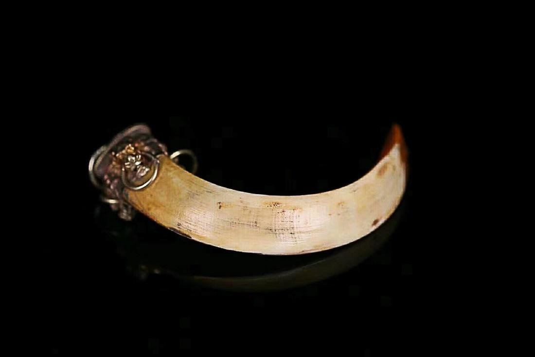 1912-1949, A BIG ANIMAL TOOTH, THE REPUBLIC OF CHINA - 5