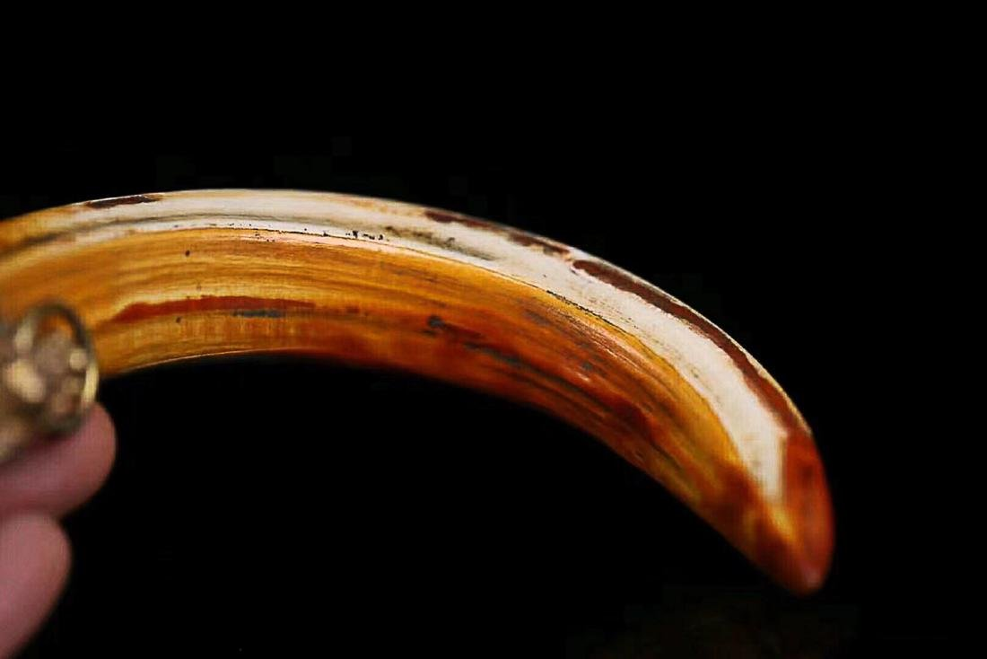 1912-1949, A BIG ANIMAL TOOTH, THE REPUBLIC OF CHINA - 6