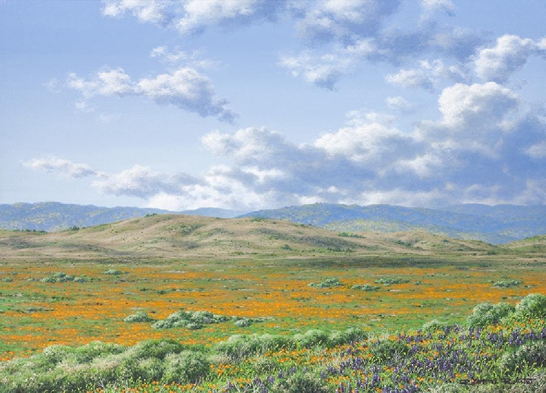 Robert A.  Richert | High Desert Bloom