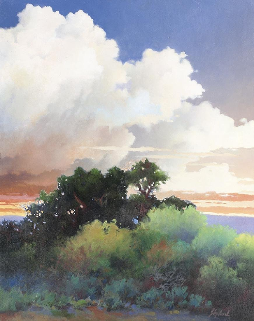 William Shepherd | Summer Cloud Formation, Snowy Range,