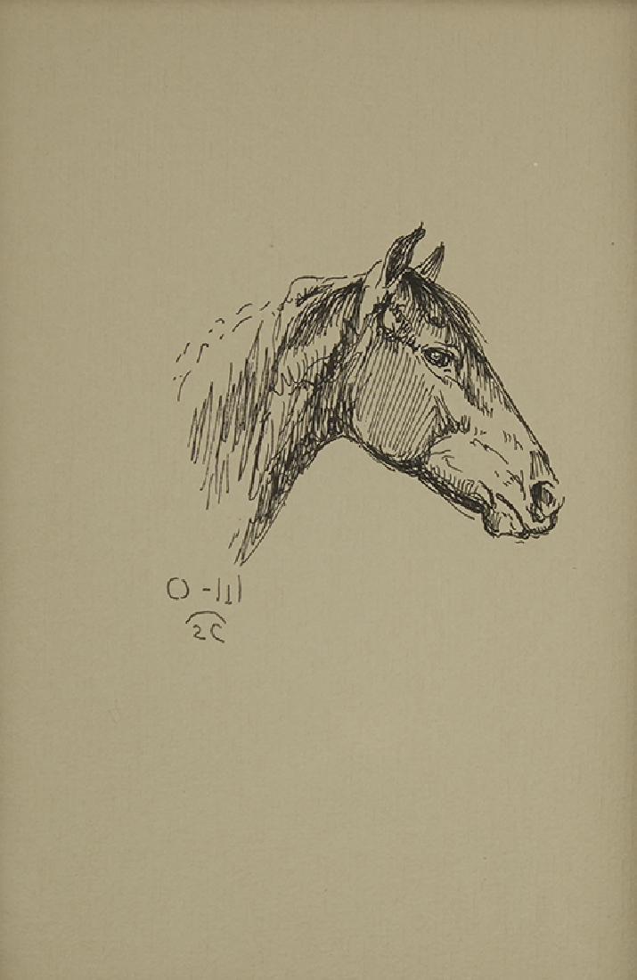 Olaf Wieghorst | Profile of Horse