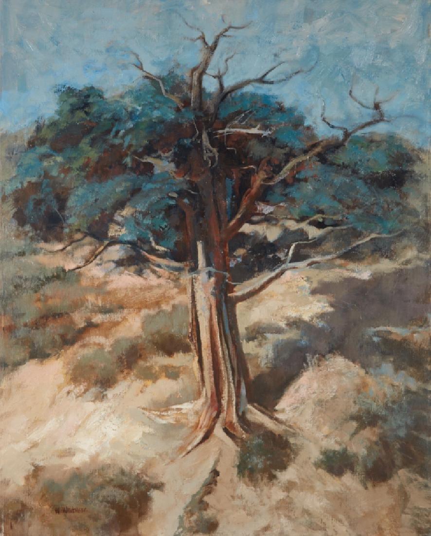 William Whitaker   The Old Cedar