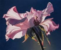 Ed Mell | Open Rose, 1995