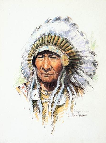8: Harley Brown - Duck Chief Black Foot Head Chief
