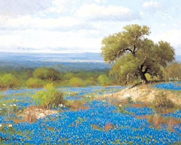 213: Porfirio Salinas - Bluebonnet Patch
