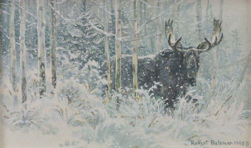 207: Robert Bateman  'Bull Moose and Snow'