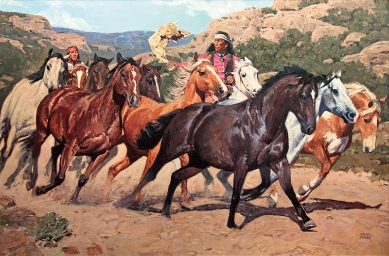 David Mann, 'Into Apache Land'