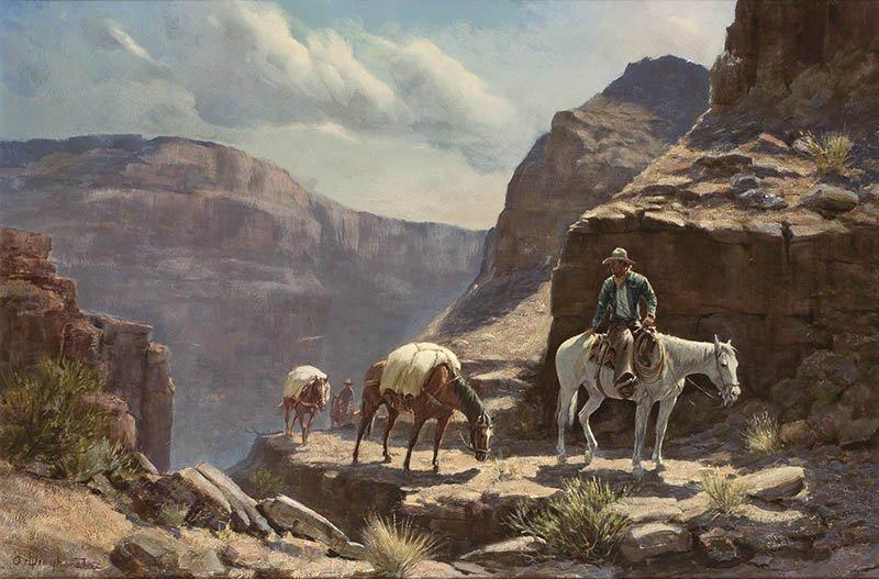 Arizona Mountain Trail