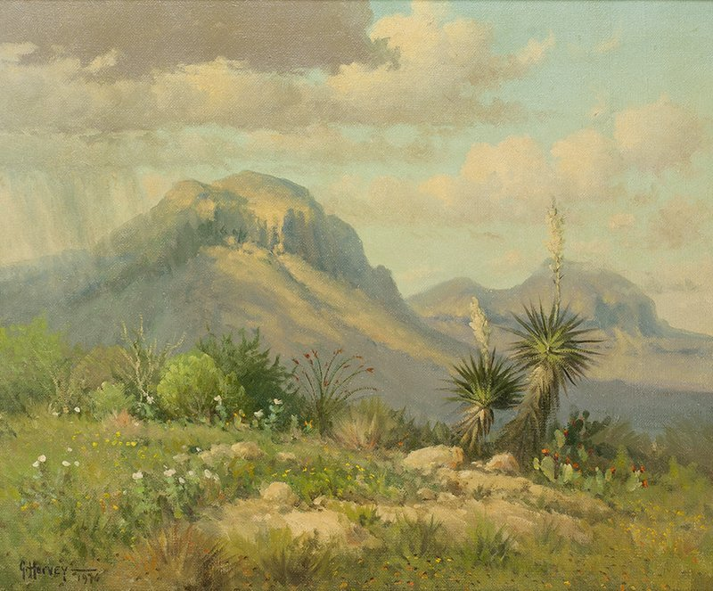 G. Harvey | Spring in the Chisos