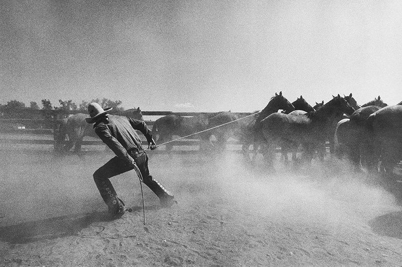 Martin Schreiber | Wrangler, T O Ranch, Raton, New