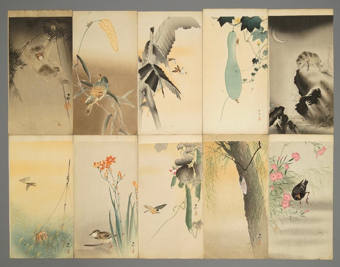 Ten Japanese watercolour paintings of animals and
