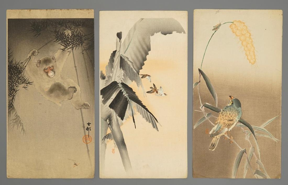 Ten Japanese watercolour paintings of animals and - 5