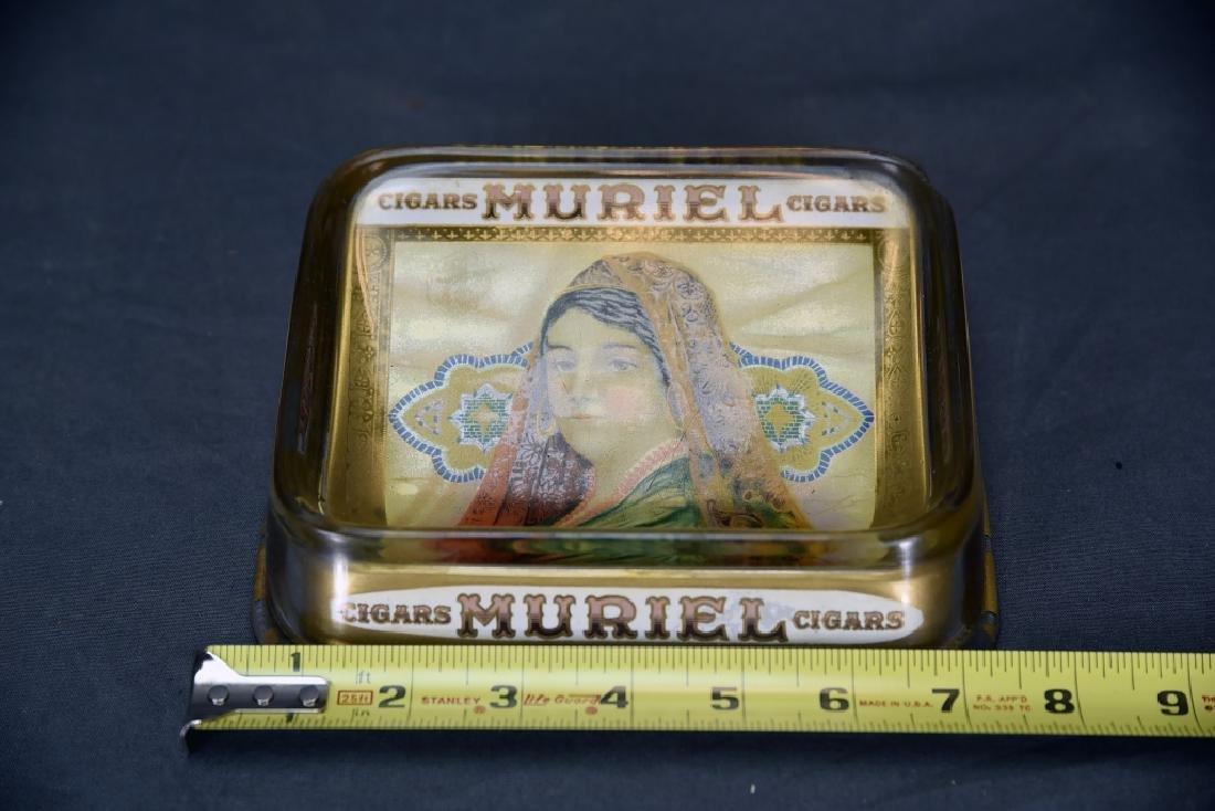 Glass Muriel Cigar Display - 2