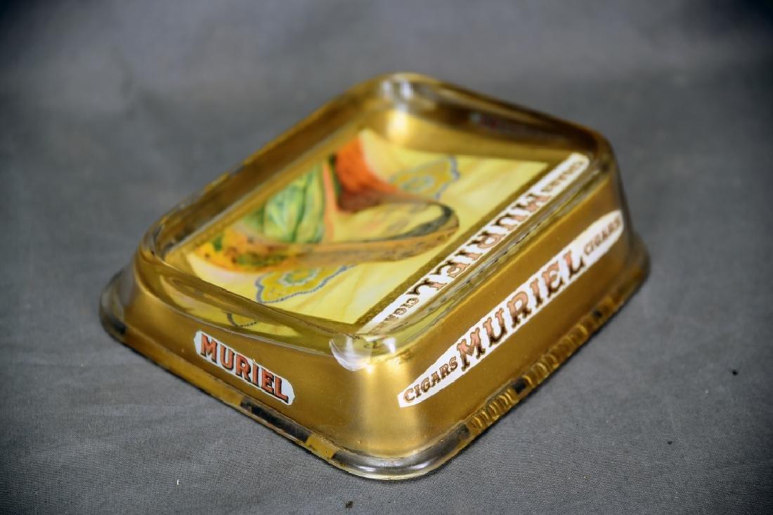 Glass Muriel Cigar Display - 4