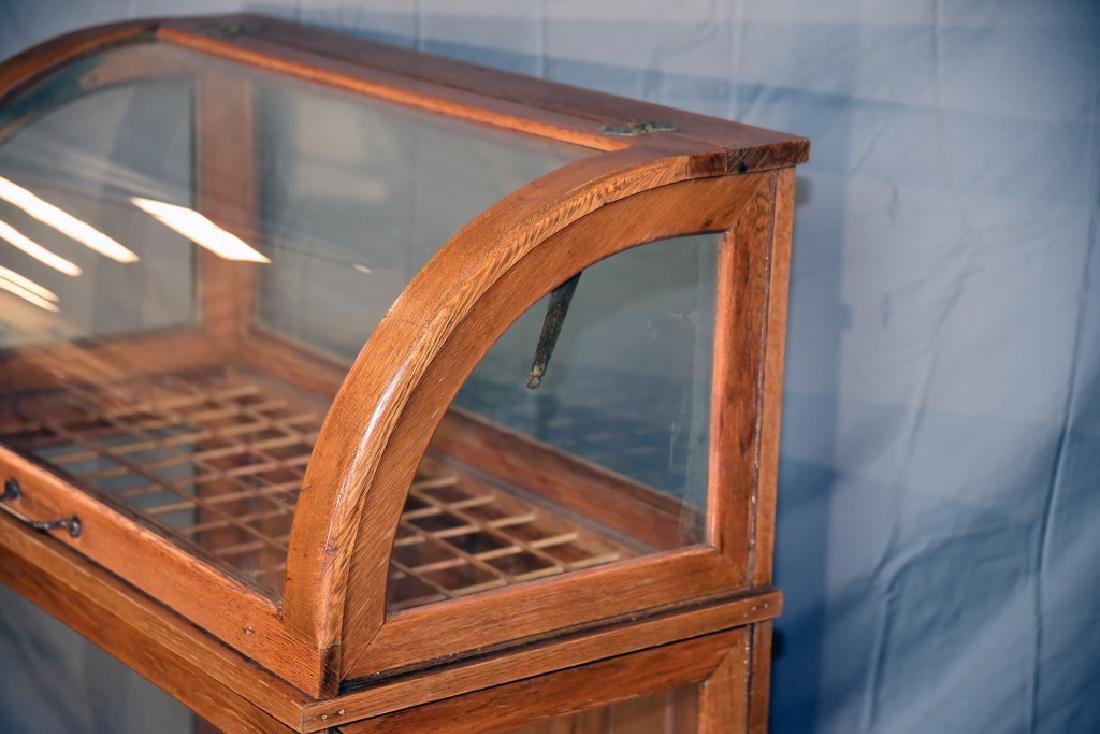 Large Oak Curved Glass Cane or Umbrella Display - 10
