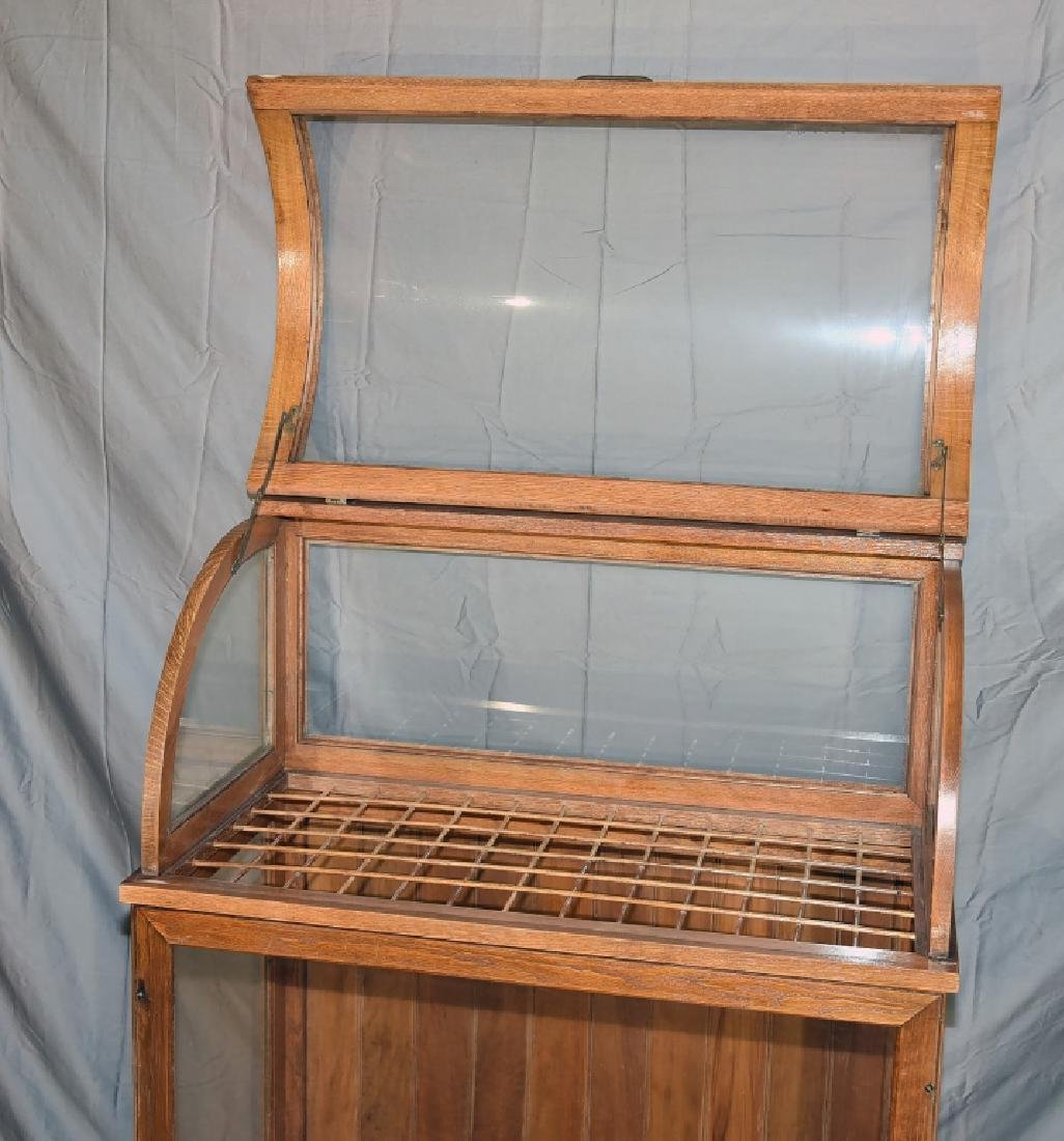 Large Oak Curved Glass Cane or Umbrella Display - 4