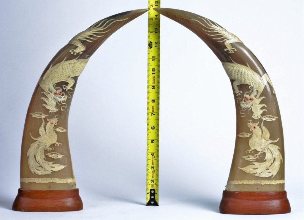 PAIR OF WATER BUFFALO HORN CARVINGS