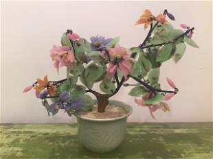 Chinese Jade Tree in Celadon Vase