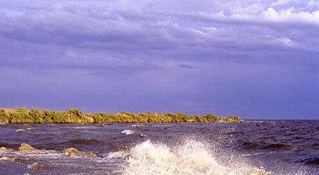 "17: Lot - Salton Sea, California"""