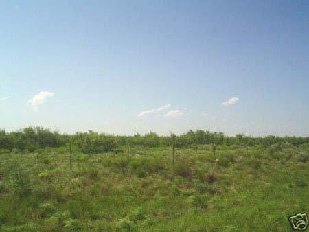 310: EXCELLENT HOMESITE~PECOS RIVER SD. 10 AC, TX