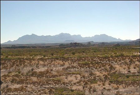 1152: 40 ACRES TEXAS LAND~INVESTMENT OPPTY.