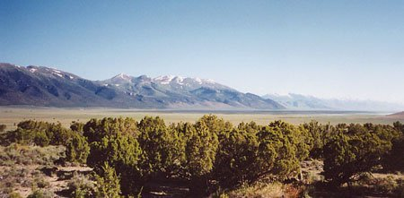 1158: 41.42 AC NEVADA LAND~EZ TERMS~B&A ONLY $199/MO.