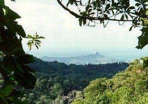 1752: HAWAIIAN ISLAND PARADISE ACRES~B&A $347MO.