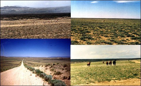 1668: 80 ACRES SWEETWATER WYOMING~B&A $249/MO.~INVEST