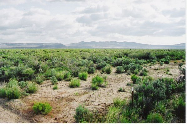 2503: 20 AC NORTHERN CA-LASSEN COUNTY ROAD FRONTAGE~