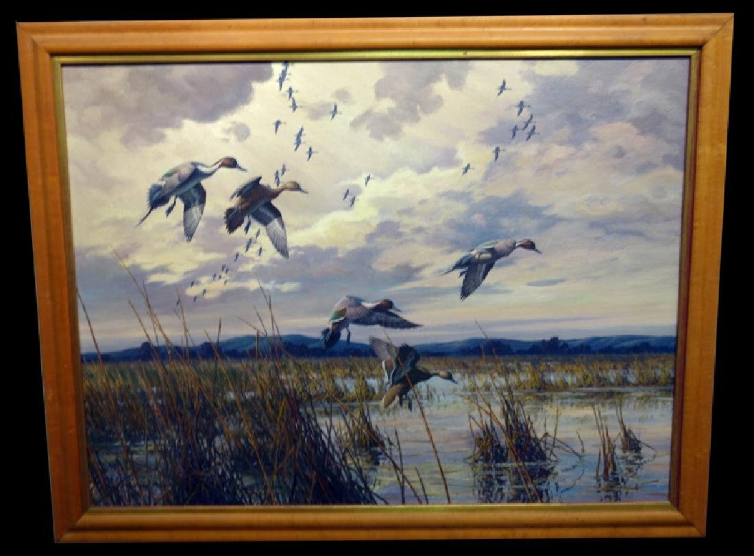 HARRY CURIEUX ADAMSON PINTAIL PAINTING