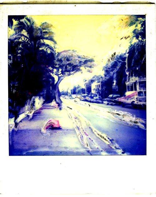 'Key West Polaroids #5'' (2005)