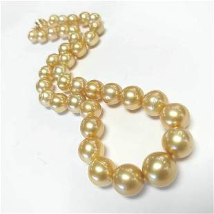 Certified Golden South Sea Pearl Necklace