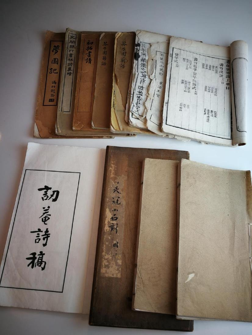 Antique Chinese Books 11 Volumes - 4
