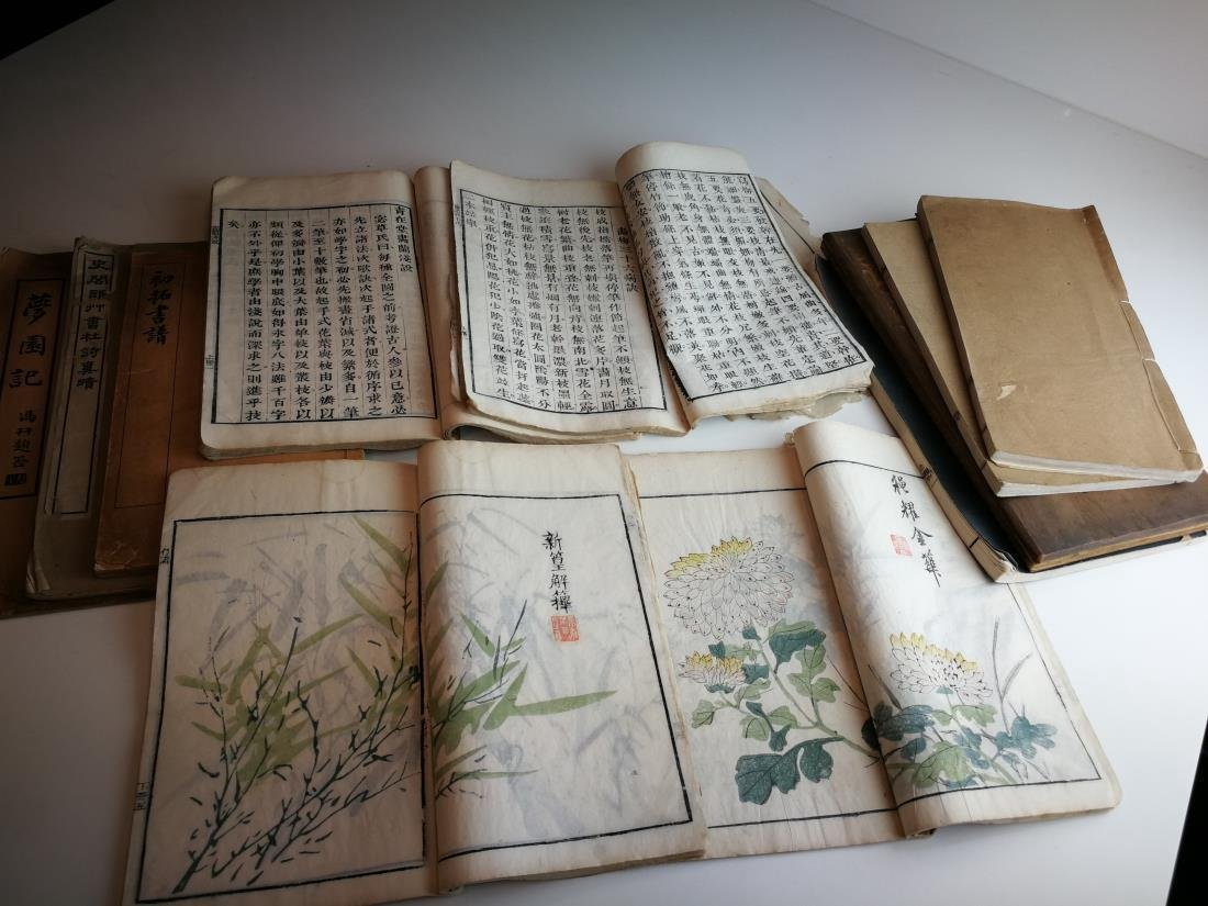 Antique Chinese Books 11 Volumes - 5