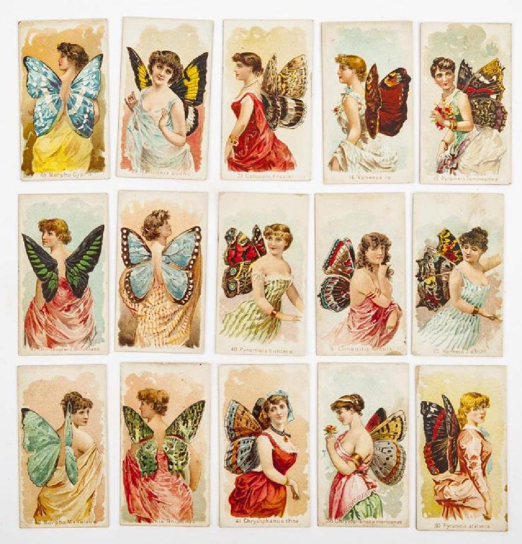 15 Wm. S. Kimball & Co's Butterfly Cigarette Cards
